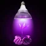 Светодиодные фито-светильники