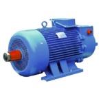 Электродвигатель 4МТН